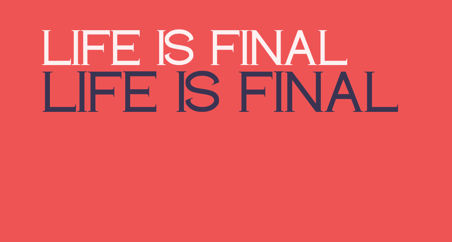 LIFE IS FINAL