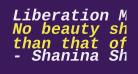 Liberation Mono Bold Italic