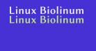 Linux Biolinum O Bold