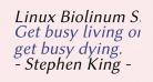 Linux Biolinum Slanted