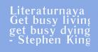 Literaturnaya Book