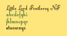 Little Lord Fontleroy NF