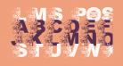 LMS Post-Thanksgiving Shopping