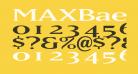 MAXBaerOpti-Wide