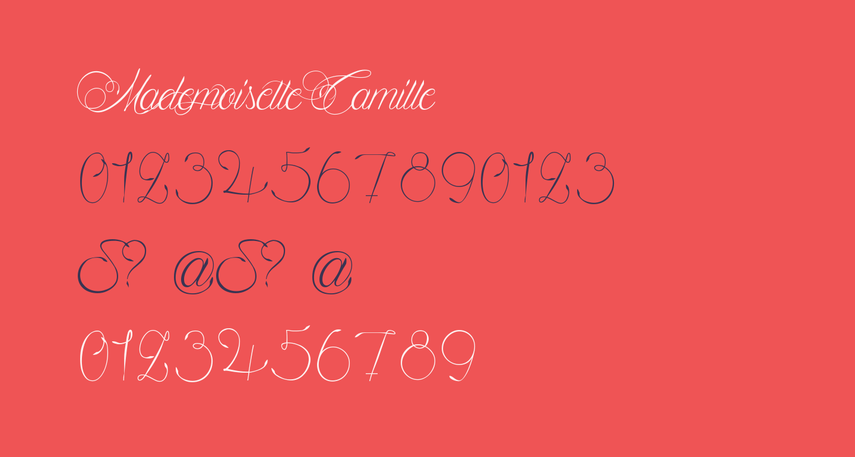Mademoiselle Camille