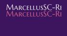 MarcellusSC-Regular