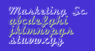 Marketing Script Shadow