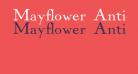 Mayflower Antique