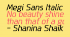 Megi Sans Italic