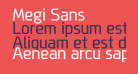 Megi Sans