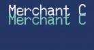 Merchant Copy Doublesize