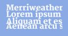 Merriweather Black