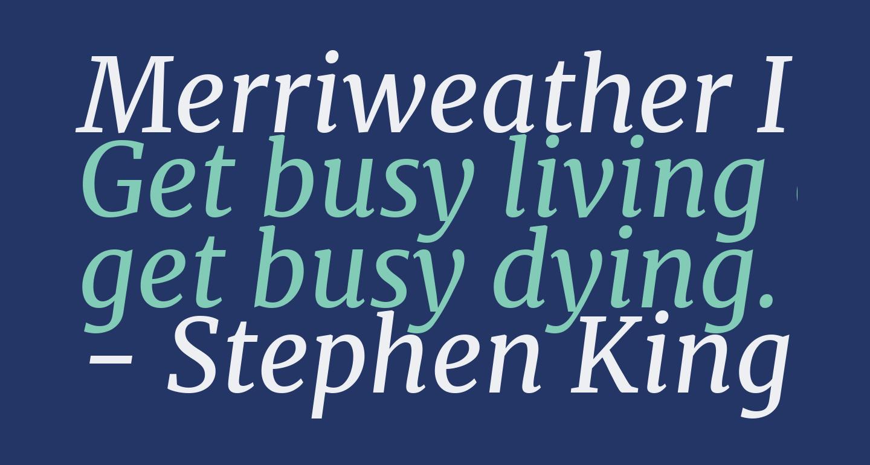 Merriweather Italic