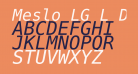 Meslo LG L DZ Italic