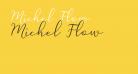 Michel Flow