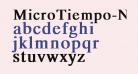 MicroTiempo-Normal Bold