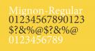Mignon-Regular