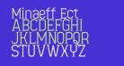 Minaeff Ect