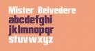 Mister Belvedere