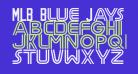 MLB Blue Jays Vintage
