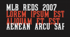 MLB Reds 2007