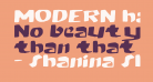 MODERN hand fraktur