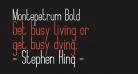 Montepetrum Bold