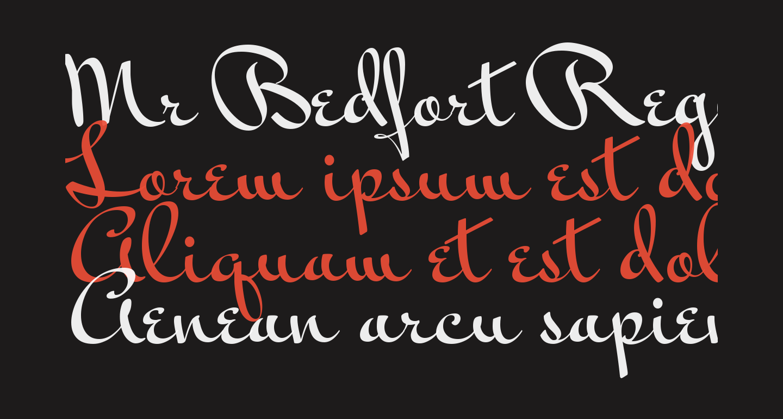 Mr Bedfort Regular
