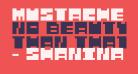Mustache Bandit Regular