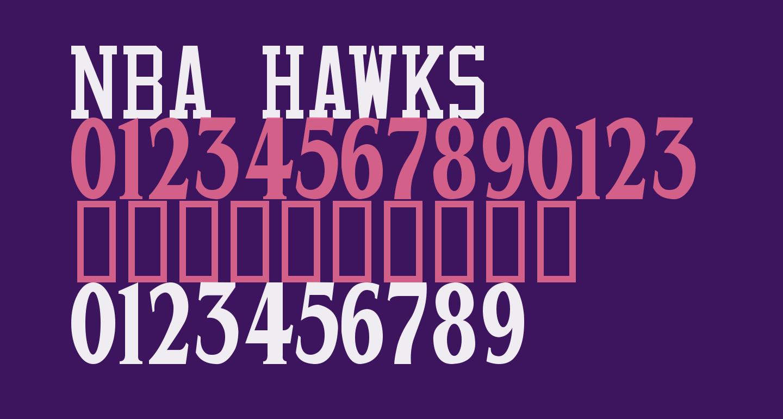 NBA Hawks