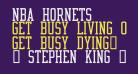 NBA Hornets