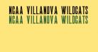 NCAA Villanova Wildcats