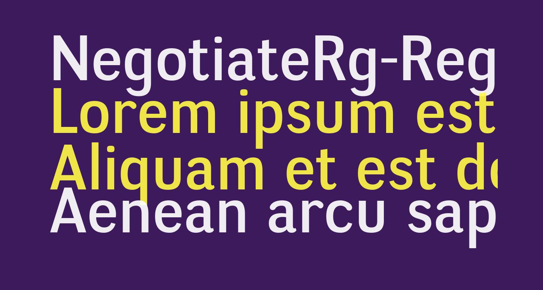 NegotiateRg-Regular