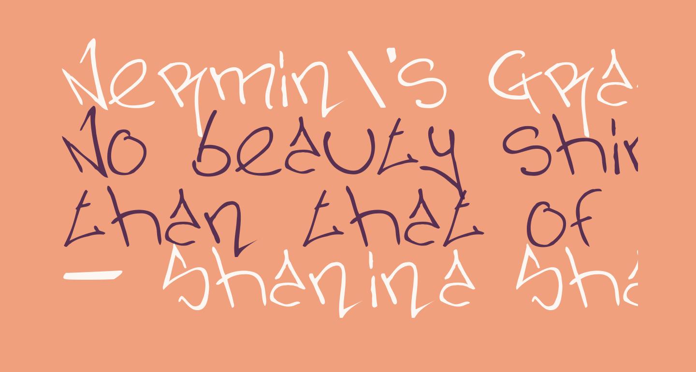 Nermin's Graffiti