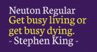 Neuton Regular