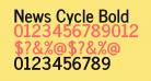 News Cycle Bold