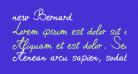 new Bernard