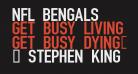 NFL Bengals