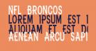 NFL Broncos