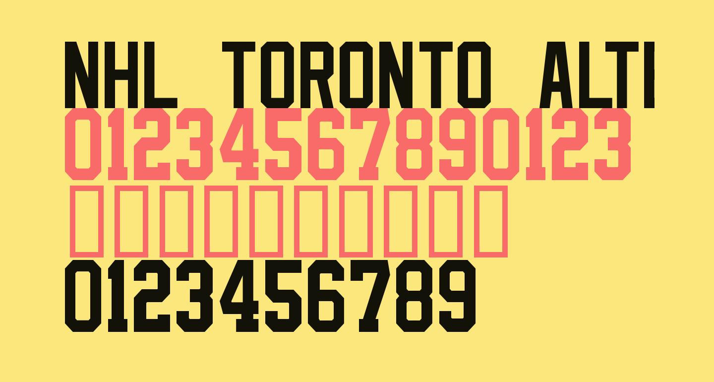 NHL Toronto Alternate