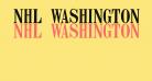 NHL Washington