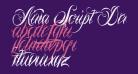 Nina Script Demo