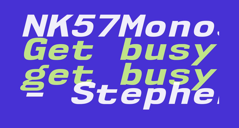 NK57MonospaceExEb-Italic