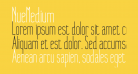 NueMedium