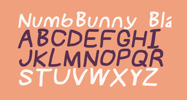 NumbBunny Black Italic