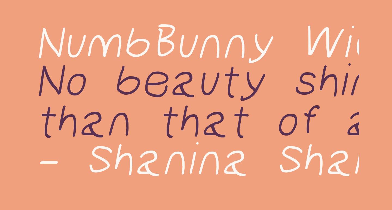 NumbBunny Wide Italic
