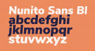 Nunito Sans Black Italic