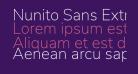 Nunito Sans ExtraLight
