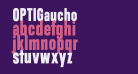 OPTIGaucho