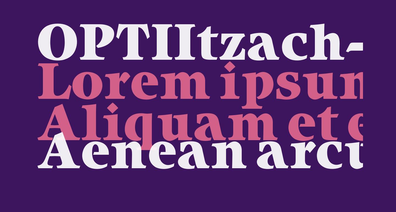 OPTIItzach-Heavy